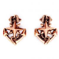 Ladies Chrysalis Rose Gold Plated Charmed North Star Earrings CRET0209RG