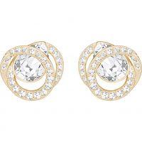 Ladies Swarovski Gold Plated Earrings 5289032