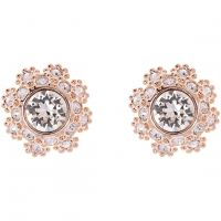 Ted Baker Dames Seraa Crystal Daisy Lace Stud Earring Verguld Rose Goud TBJ1584-24-02