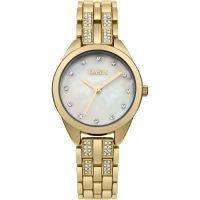 Damen Oasis Watch B1619