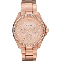 Damen Fossil Cecile Watch AM4483