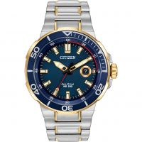 Hommes Citizen Endeavor Eco-Drive Montre