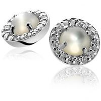 Ladies Zinzi Sterling Silver Earrings ZIO1039