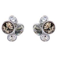 Ladies Ted Baker Stainless Steel Lynda Jewel Cluster Stud Earring TBJ496-01-110