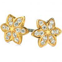 femme Fiorelli Jewellery Earrings Watch E4856C