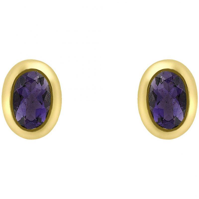 Ladies Essentials 9ct Gold Oval Iolite Stud Earrings