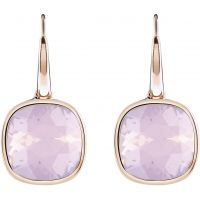 Ladies Guess Rose Gold Plated Crystal Shades Earrings