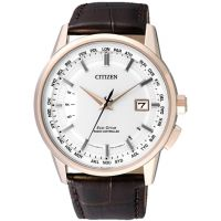 Herren Citizen World Perpetual A-T Eco-Drive Uhr