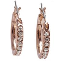 Anne Klein Dames Earrings Basismetaal 60345174-9DH