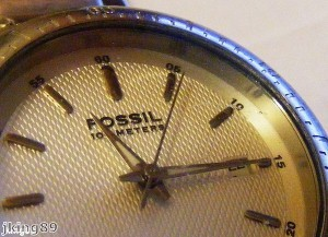 Fossil to sell Michael Kors watches