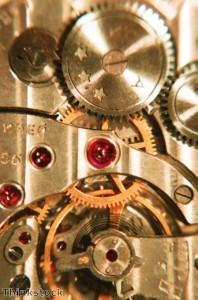 Selecting watches 'about more than just looks'