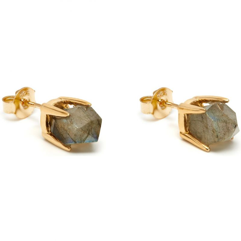 Ladies Lola Rose Gold Plated Labradorite Perla Earrings 553360
