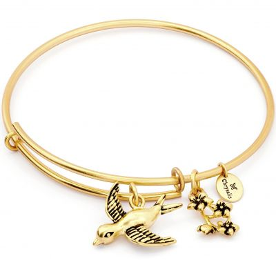 Biżuteria damska Chrysalis Spirited Sparrow Expandable Bangle CRBT1210GP