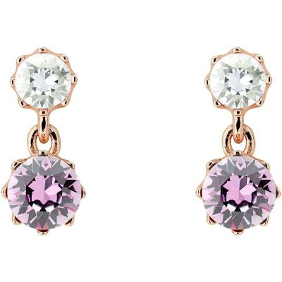 Ladies Ted Baker PVD rose plating Connolee Crystal Crown Short Earrings TBJ1470-24-34