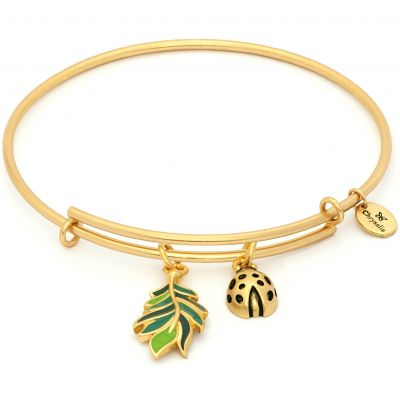 f8f19983663c4 Chrysalis Jewellery | Official CHRYSALIS Stockist | WatchShop.com™