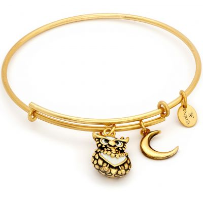 Ladies Chrysalis PVD Gold plated NATURE OWL EXPANDABLE BANGLE CRBT2006GP
