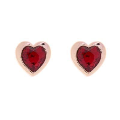 Biżuteria damska Ted Baker Jewellery Crystal Stud Earrings TBJ1654-24-22