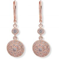 Anne Klein Jewellery Stunning Stones Earrings JEWEL
