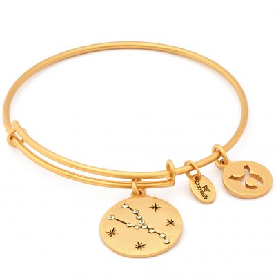 Ladies Chrysalis Gold Plated Taurus Expandable Bangle CRBT1302GP