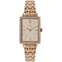 Ladies Radley Primrose Hill Watch