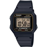 Casio Classic Watch W-217H-9AVEF
