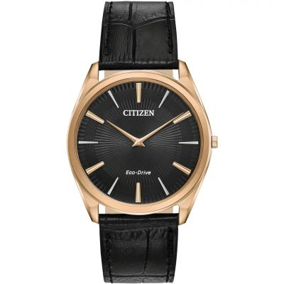 Citizen horloge AR3073-06E