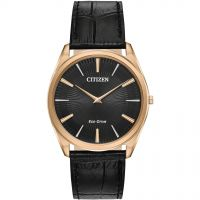 Citizen Watch AR3073-06E