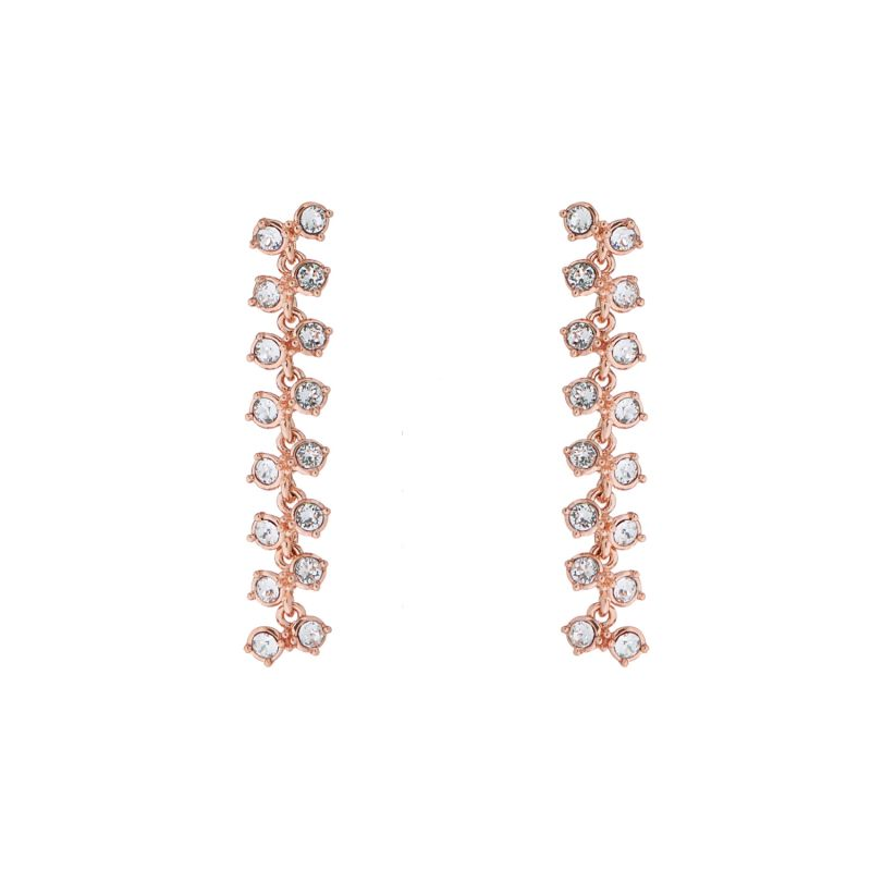 Ladies Ted Baker Elecia Princess Sparkle Drop Earring TBJ1911-24-02
