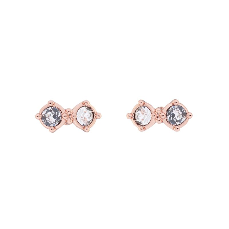 Ladies Ted Baker Eliora Princess Sparkle Stud Earring TBJ1912-24-02
