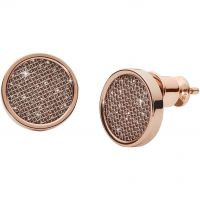 Biżuteria damska Skagen Jewellery Merete Earrings SKJ1175791