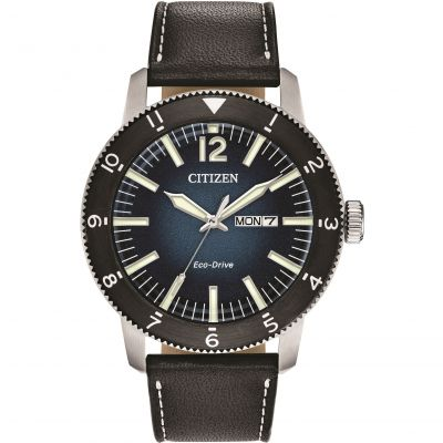 Citizen Gents Strap Wr100 Herenhorloge Zwart AW0078-08L