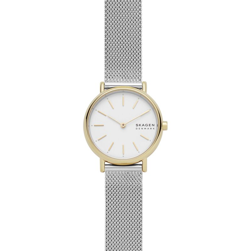 Skagen Watch SKW2910