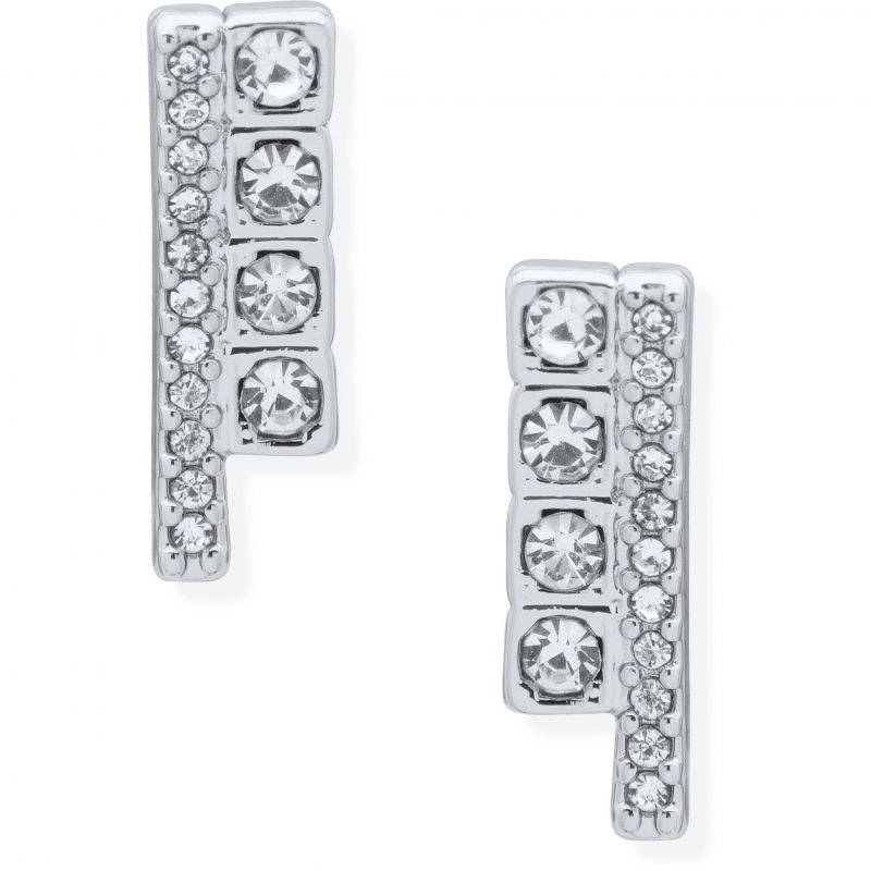 DKNY Jewellery Silver Coloured Pave Cube Stud Earrings 60558727-G03