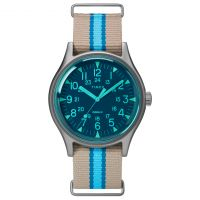 Timex Watch TW2T25300