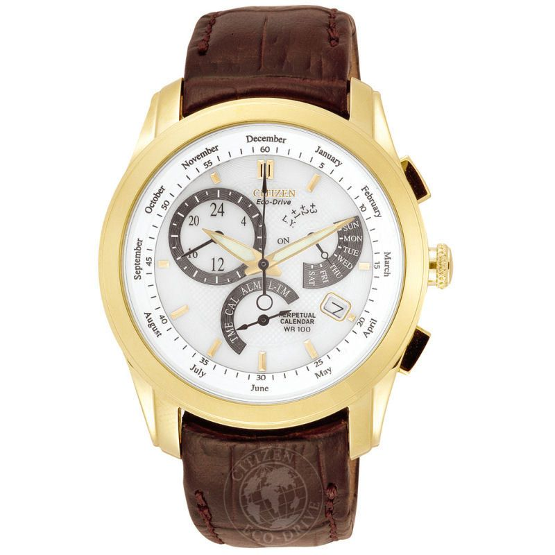 Mens Citizen Calibre 8700 Alarm Watch BL8002-08A
