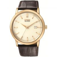 Mens Citizen Eco-Drive Watch