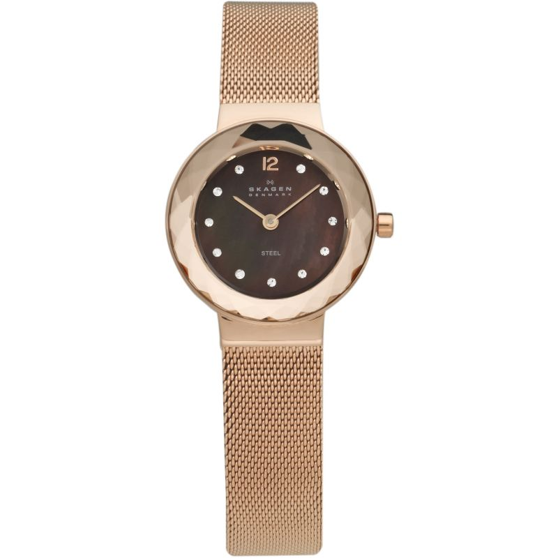 Ladies Skagen Leonora Watch 456SRR1