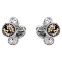 Ladies Ted Baker Stainless Steel Lynda Jewel Cluster Stud Earring TBJ496-01-110
