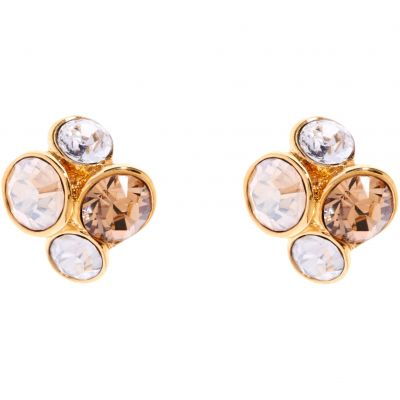 Ladies Ted Baker PVD Gold plated Lynda Jewel Cluster Stud Earring TBJ496-02-62