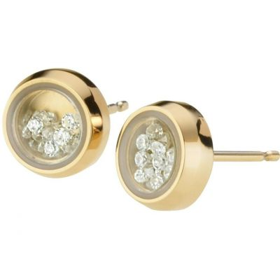 Ladies STORM PVD Gold plated Mimi Earring MIMI-EARRING-GOLD