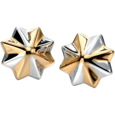Biżuteria damska Fiorelli Jewellery Earrings E5076
