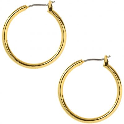 Anne Klein Dam Earrings Basmetall 60155576-887