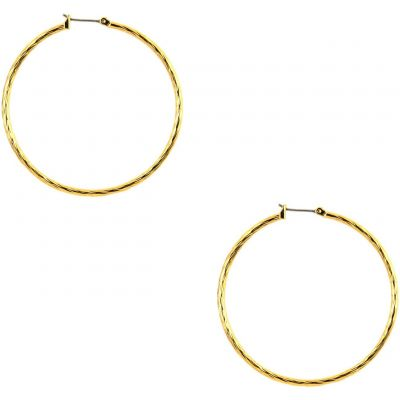 Anne Klein Dam Earrings Basmetall 60155613-887